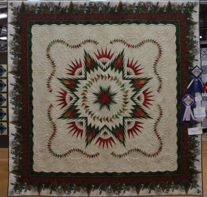 "Linda B's Glacier Star - I love how she added to the main body of the quilt with her ""tucked"" border and this beautiful Jason Yenter print."