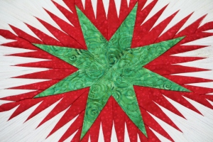 Close up of the center - small formal feathers in the center star.