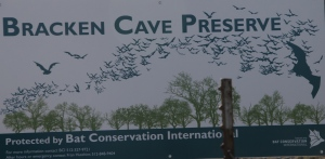 Bracken Cave Preserve is part of the Bat Conservation Inc program 501c3