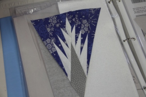 Ruth, a first paper-piecer completed her wedge.  I think she was surprised she could do it!