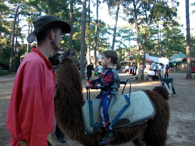 Mr. Q experiences the llama!