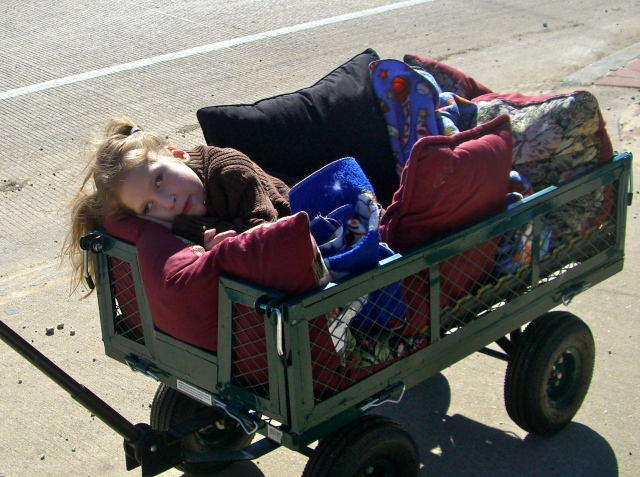 Chillin in the wagon when we would go for walks.  You were recovering from major surgery but you always wanted to be doing something!
