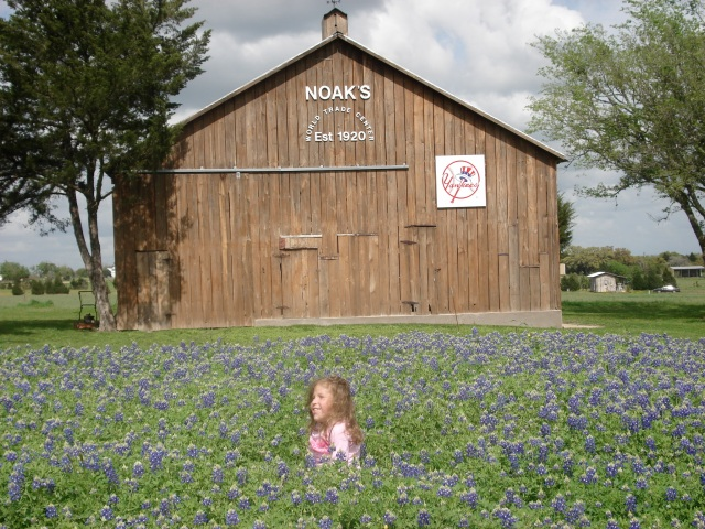 Mr. Noak's barn was a great backdrop for this photo!