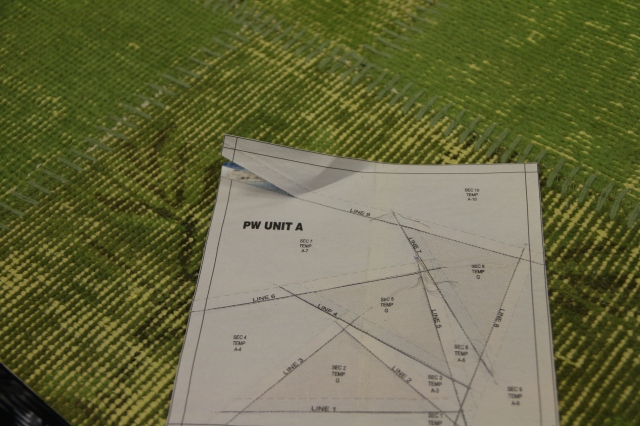 Now you are ready to start pulling paper off.  Start with Section 10 and work your way back to section 1.  I like to use my fingernail to hold the stitches at the beginning so they do not pull apart as I remove the paper.